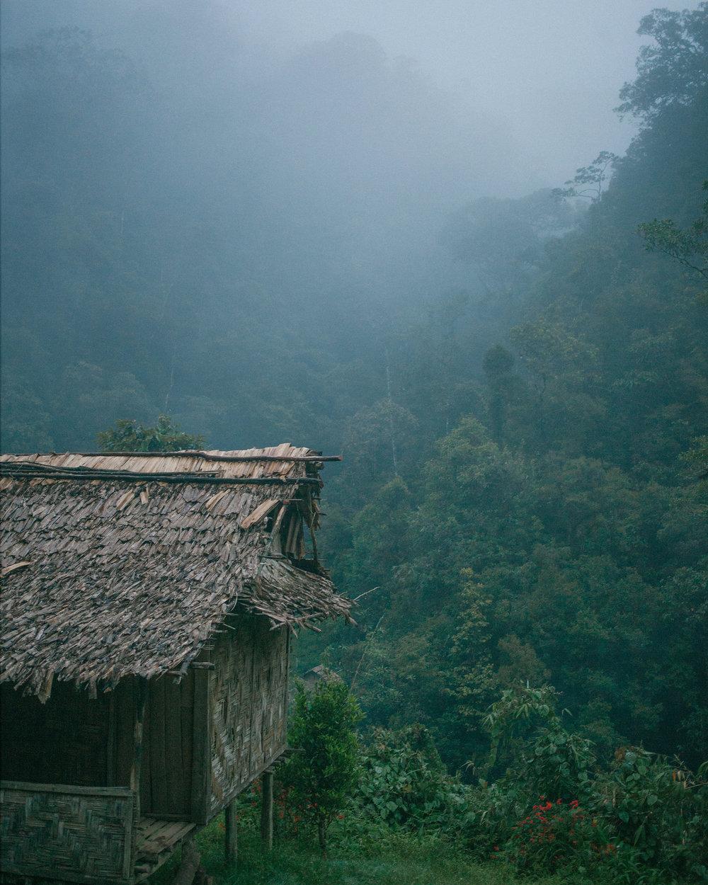 Walking the kokoda track - Papua New Guinea