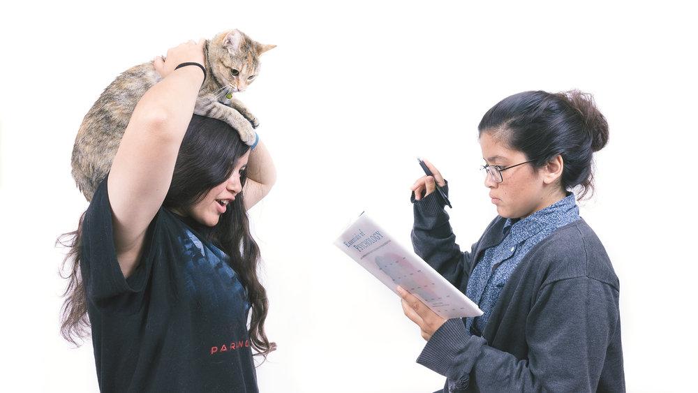 The_HS_Student-F.jpg