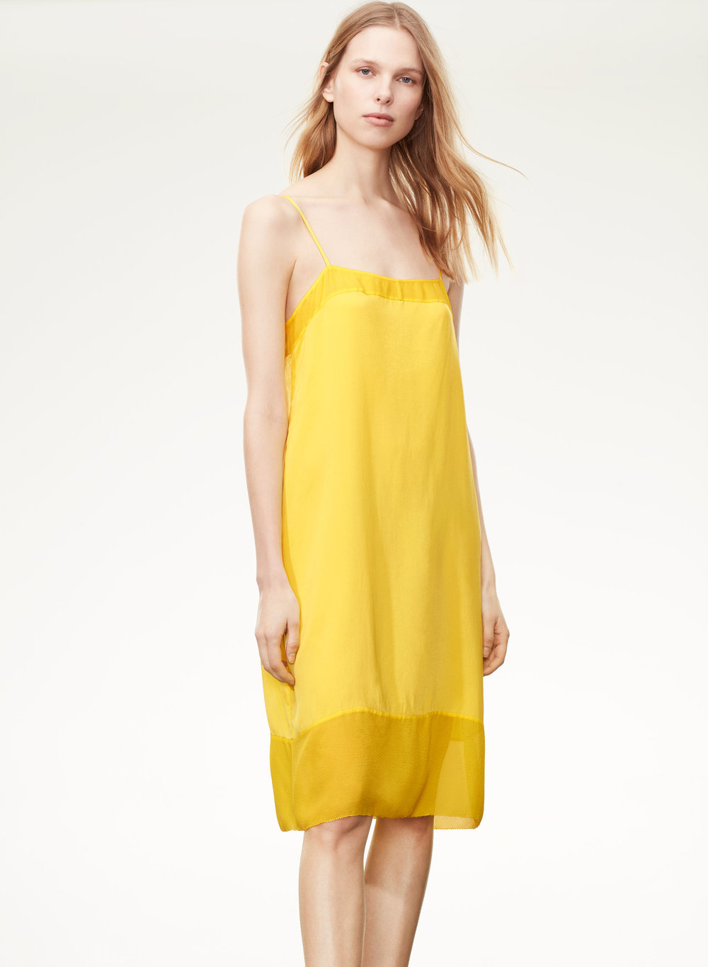 Virton Dress - Aritzia    $59.99