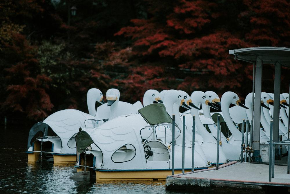 prewedding_Tokyo_Japan-48.jpg