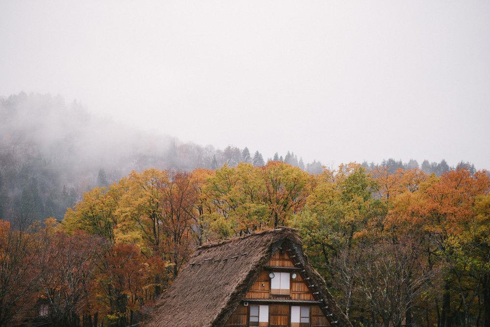 prewedding_Japan_fall-13.jpg