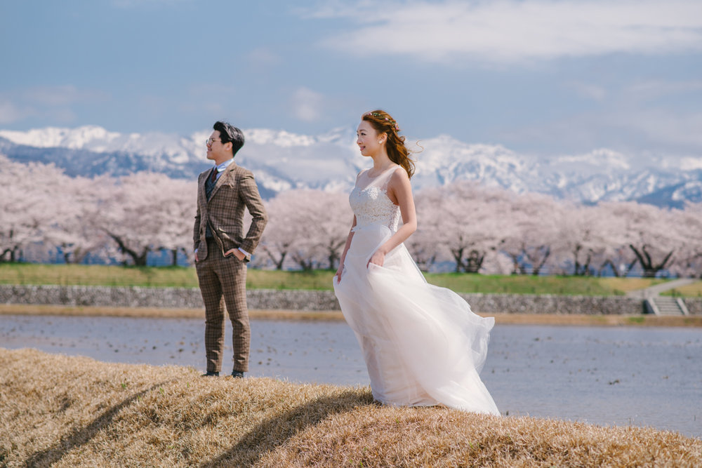 cherry_blossom_prewedding-34.jpg