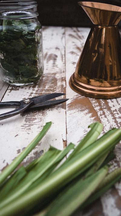 Chopped chicory