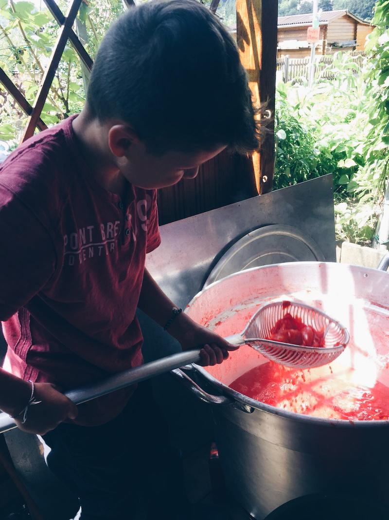 Straining the tomatoes.jpg