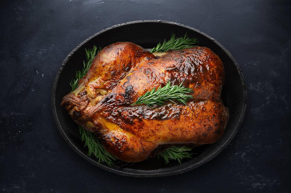 Turkey For Holidays.jpg