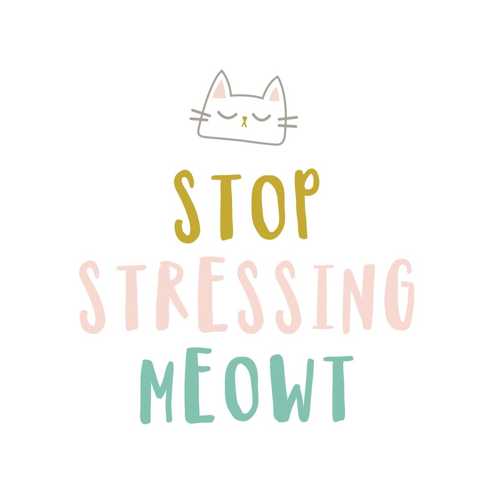 Stop Stressing Meowt | My Only Sunshine Creative | Digital Prints