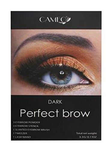 Eye Brow Filler Kit