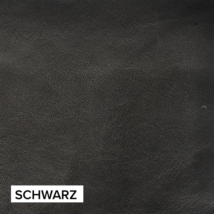 Ranchero_Schwarz_Project82 copy.jpg