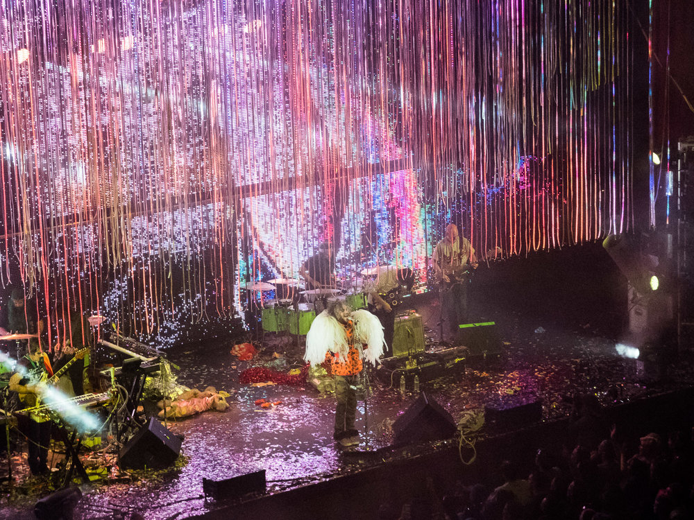 flaminglips (6 of 8).jpg