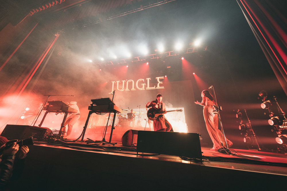 Jungle (1 of 12).jpg