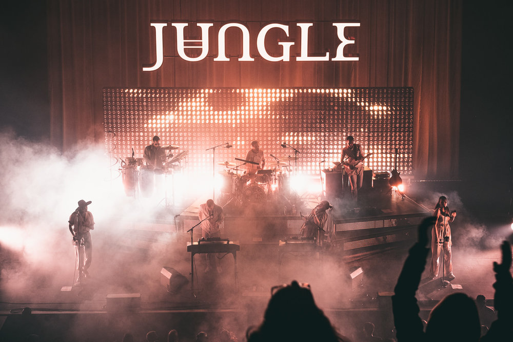 Jungle (8 of 12).jpg