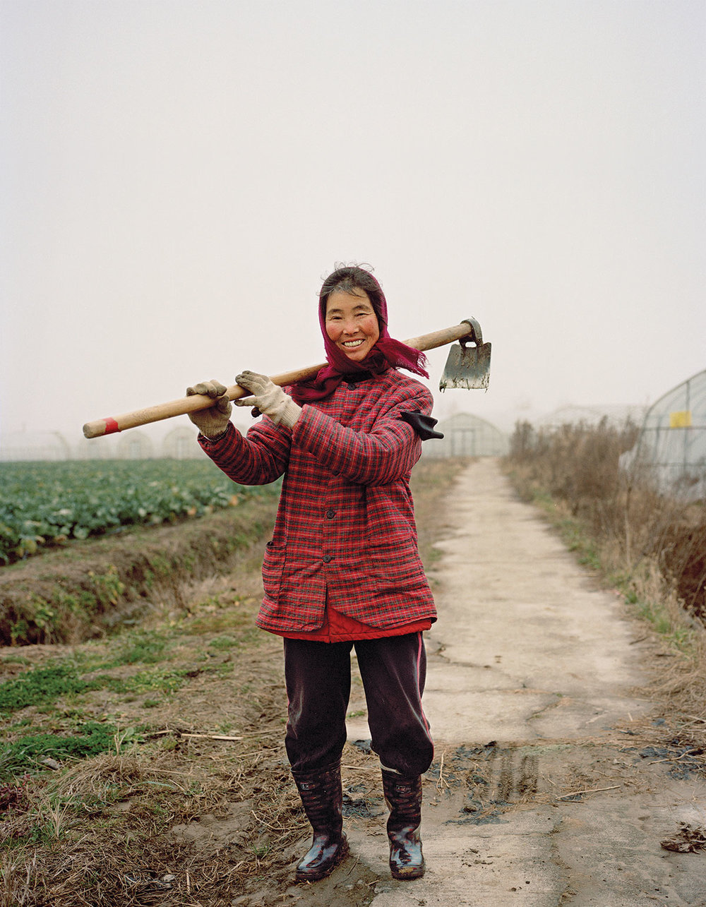 China's Agricultural Revolution