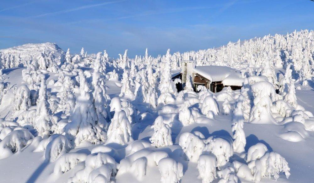 Varden Alpin Kvitfjell eventyrhytte