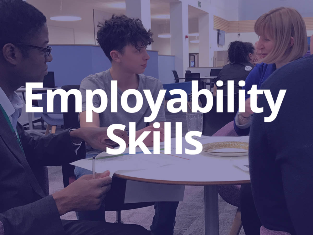 - Employers can choose to deliver core and industry related skills directly into educational institutions. One-off or sustained programmes can link in with schools' existing curriculum.