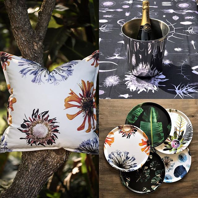 Inspirational Christmas presents with a botanical twist. Available exclusively from South African designer Clinton Friedman. Special seasonal promotional prices available now at our on line shop www.jalu.co.uk/shop/ Truly unique gifts they will treasure. #exclusivedesigns #botanicalcreativity #luxuryliving #southafrican #christmasiscoming🎄 #giftideas #inspirationalpresents #bloggerstyle #gardendesign #interiorstyle #clintonfriedman