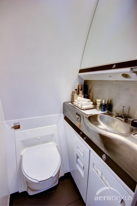 Aeronexus | VIP Boeing 767-300ER | Interior Restroom
