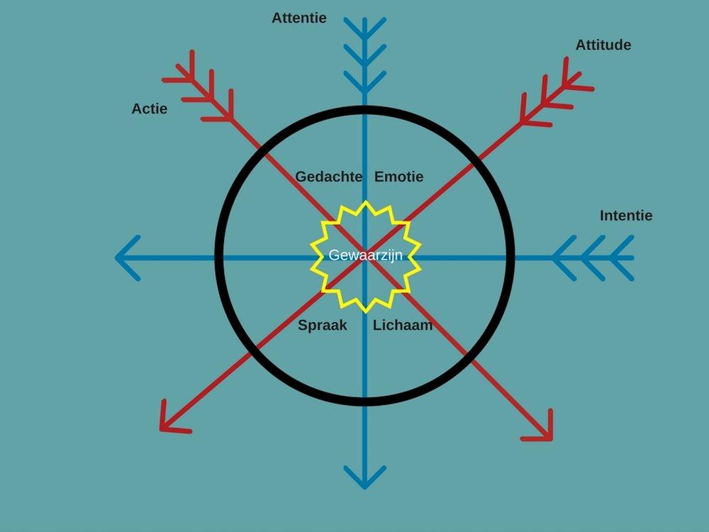 Het Compassie-Kompas