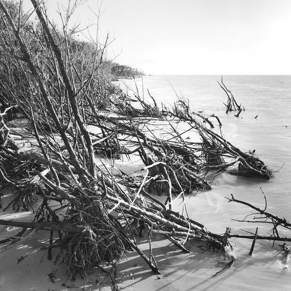 Erosion, Honeymoon Island