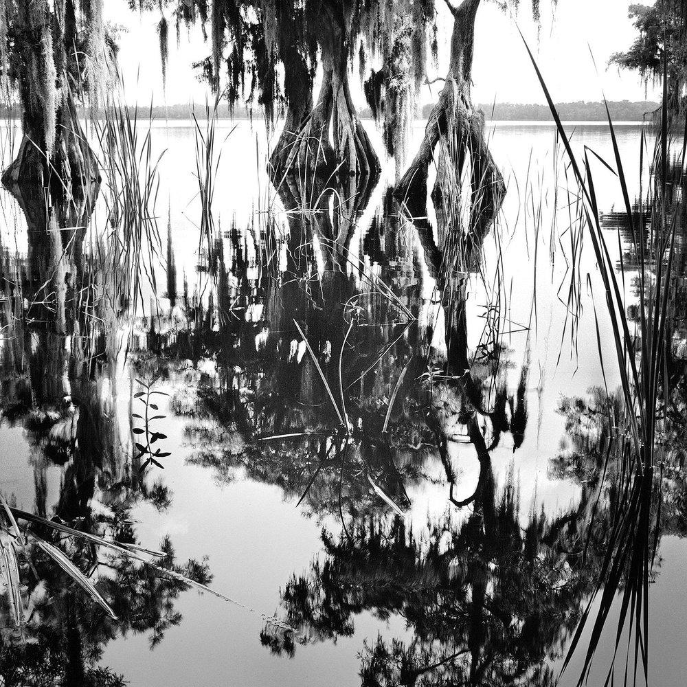 Lake Russell, Disney Wilderness Preserve