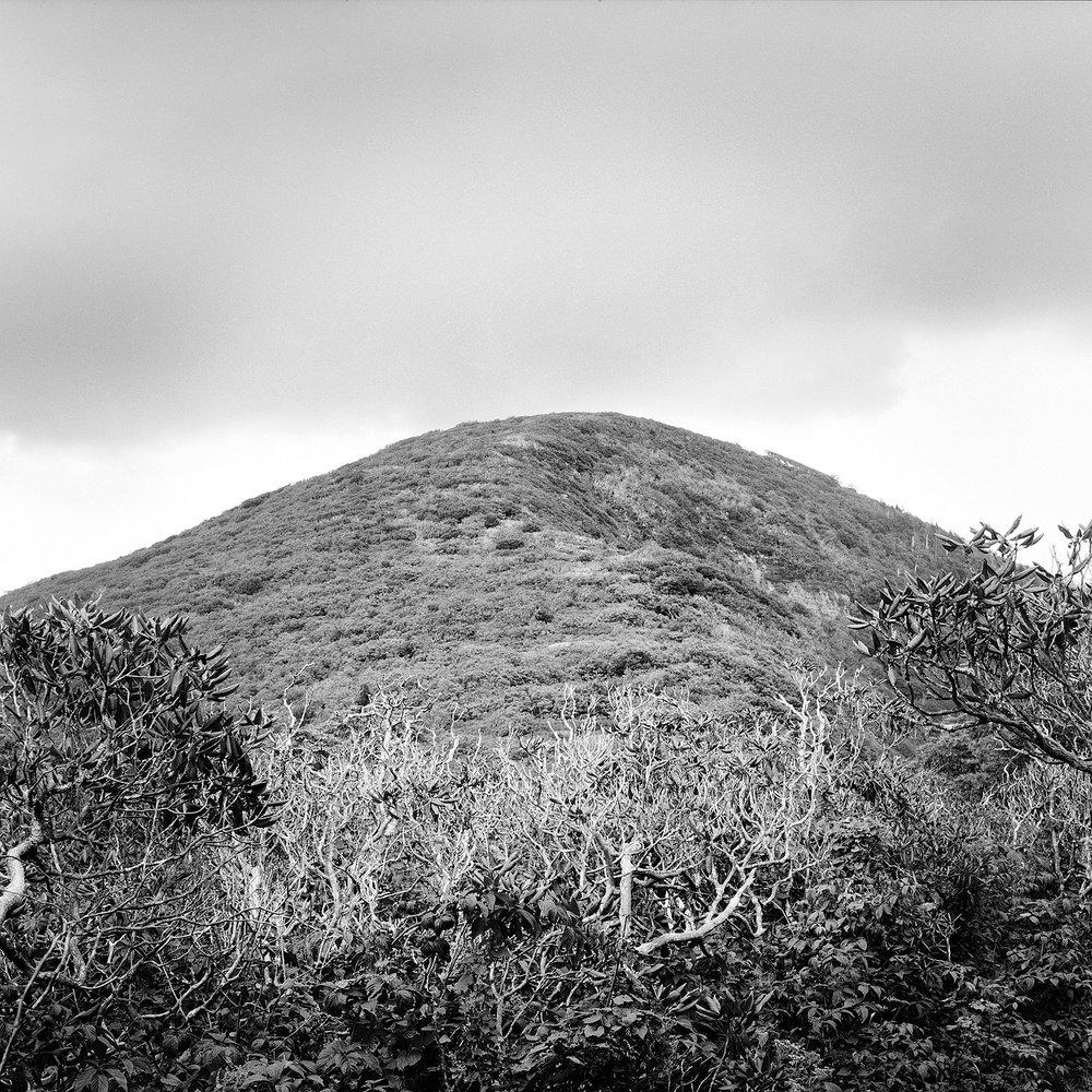 Craggy Dome #2