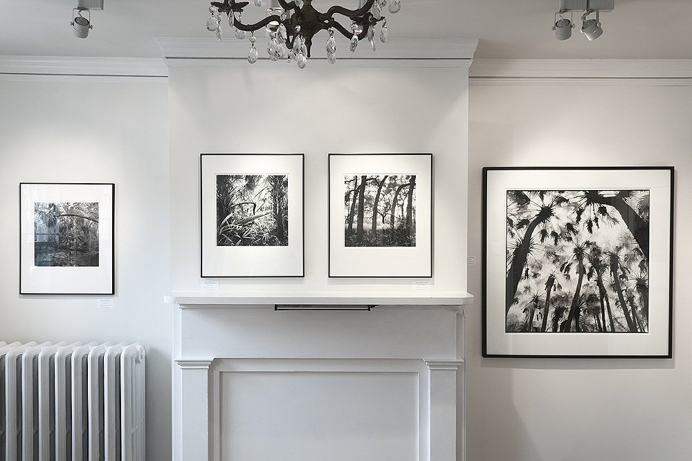 """Primitive Florida"", Davis Orton Gallery, 2013"