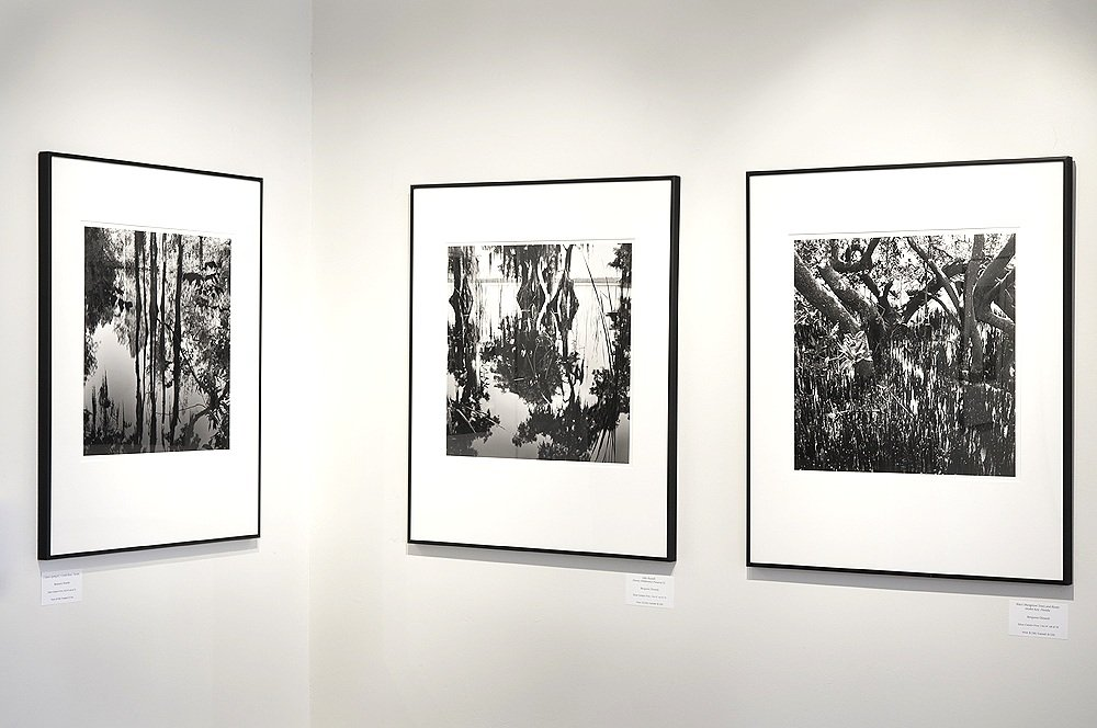 Davis Orton Gallery, 2013