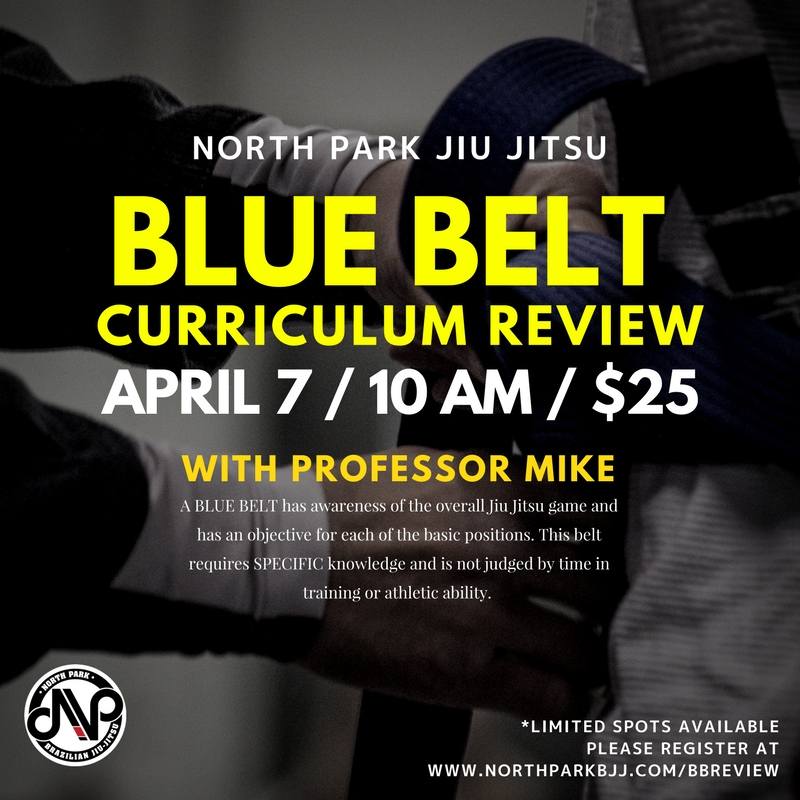 blue belt review.jpg