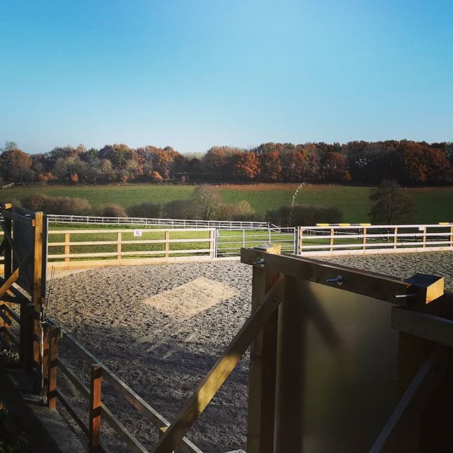The view from my bedroom for the last few days.  So very grateful to @swearing12 for having hosted me.  #workingwithhorses #equinetherapy #naturalhorsemanship #parelli #parellinaturalhorsemanship