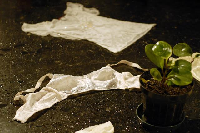 16 Itaú - Cartografía para otro jardín 10.jpg