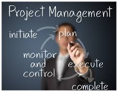 Mastering project leadership