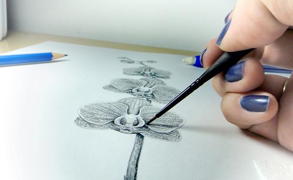 Lu-Mori-desenhando-Vermelha-Riscada-Concrecao-Orquidofolia.jpg