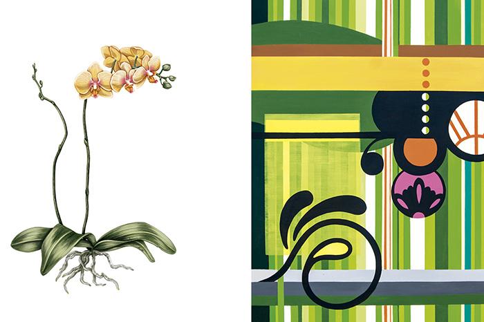 lu-mori-orquidofolia-umapaz-parque-do-ibirapuera-3.jpg