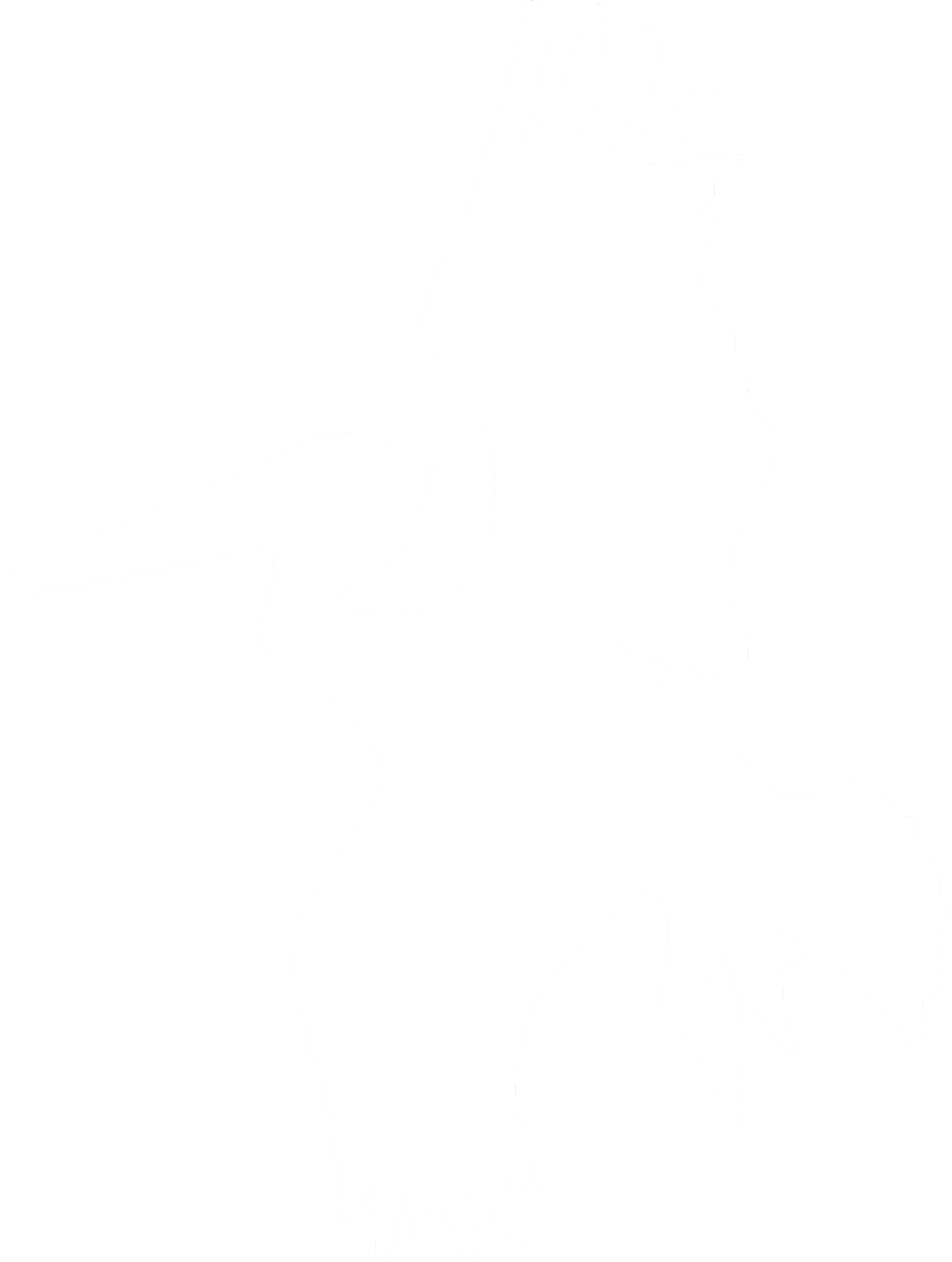 White pelican silhouette against a dark green background