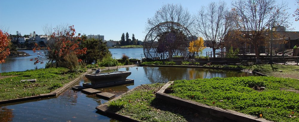 Photo of a bird enclosure with a man-made pond in the middle, with a geodesic dome cage and Lake Merritt in the background.