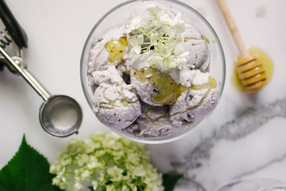 blueberry_honey_ice_cream-12.jpg