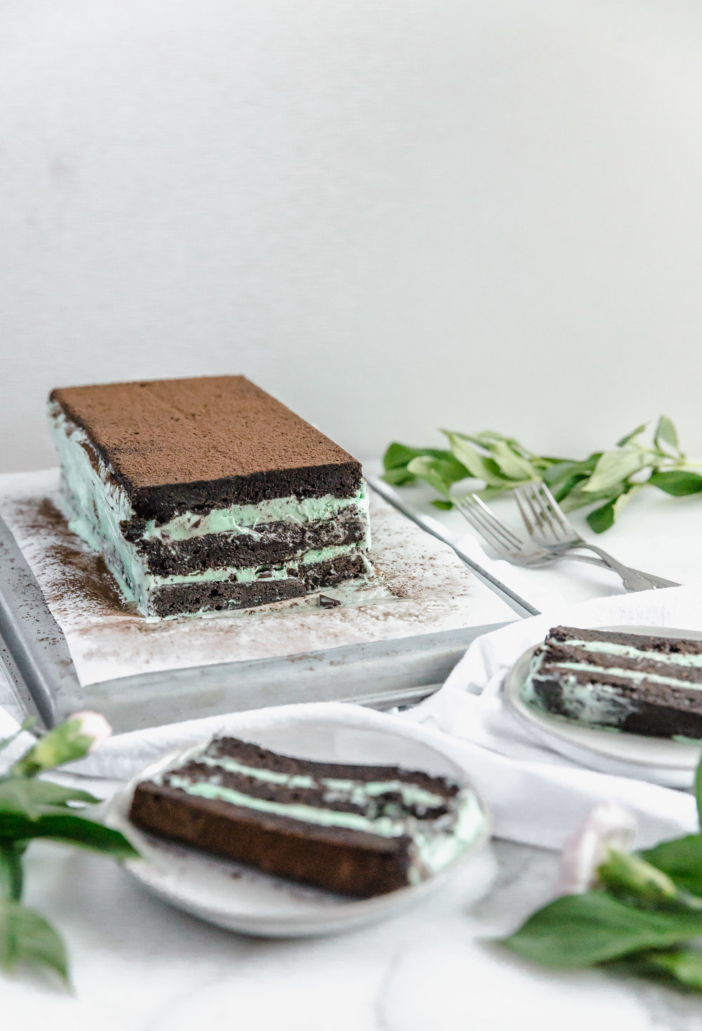 mint-ice-cream-brownie-cake-6.jpg