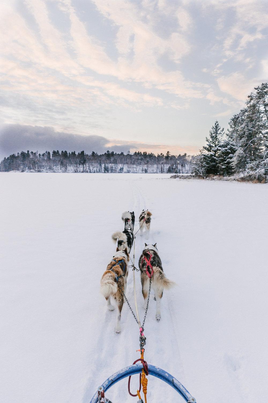 Winter 2018-45.jpg