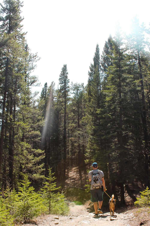 Prairie View Trail Jill Clark photo dog.jpg