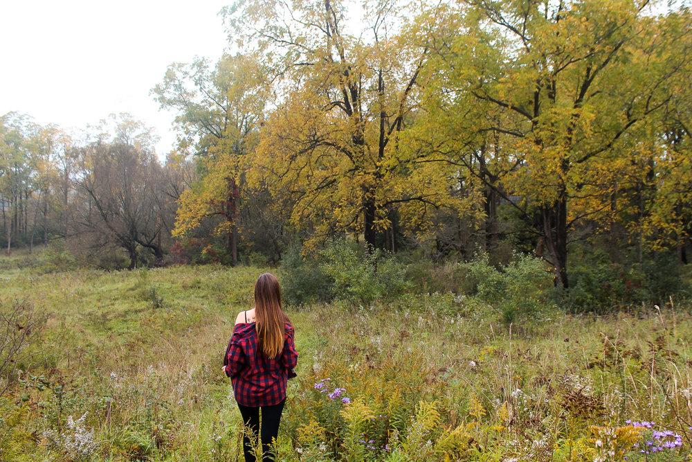 Fall things plaid.jpg
