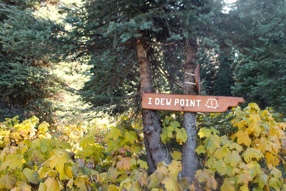 Fernie in fall I dew point.jpg