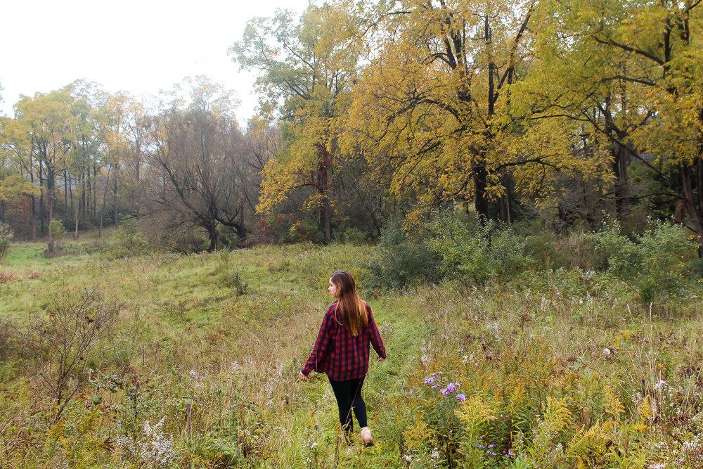 Fall things cozy plaid.jpg