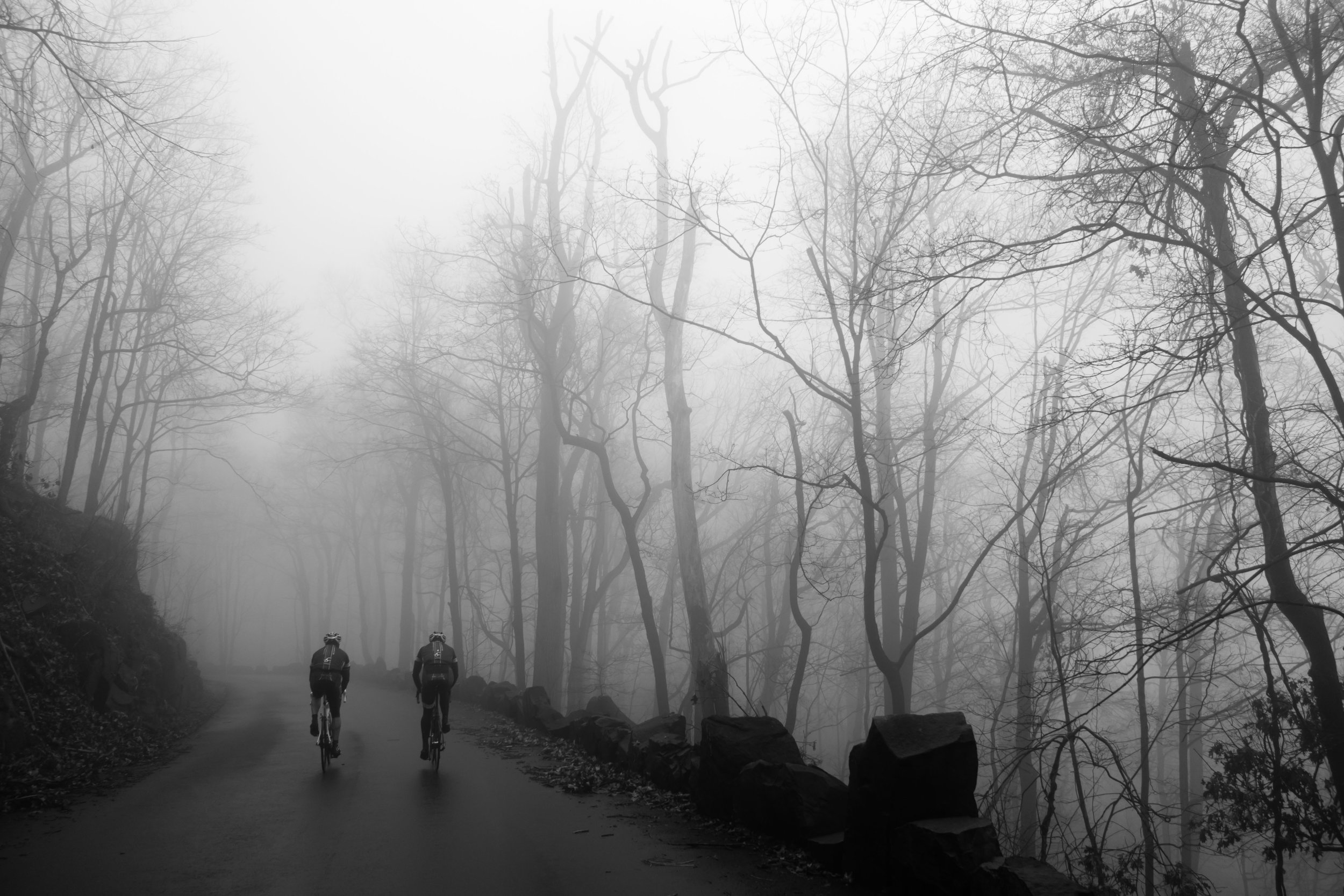 Best Camera for Bike Photography-1