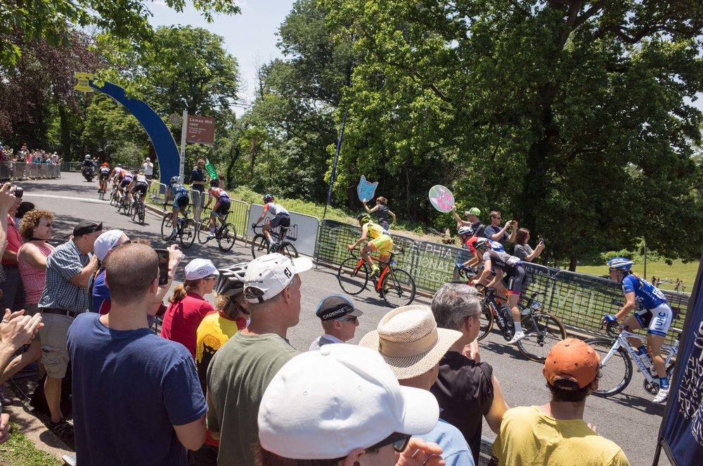 Photo Rhetoric Bike for Cheesesteak-2036