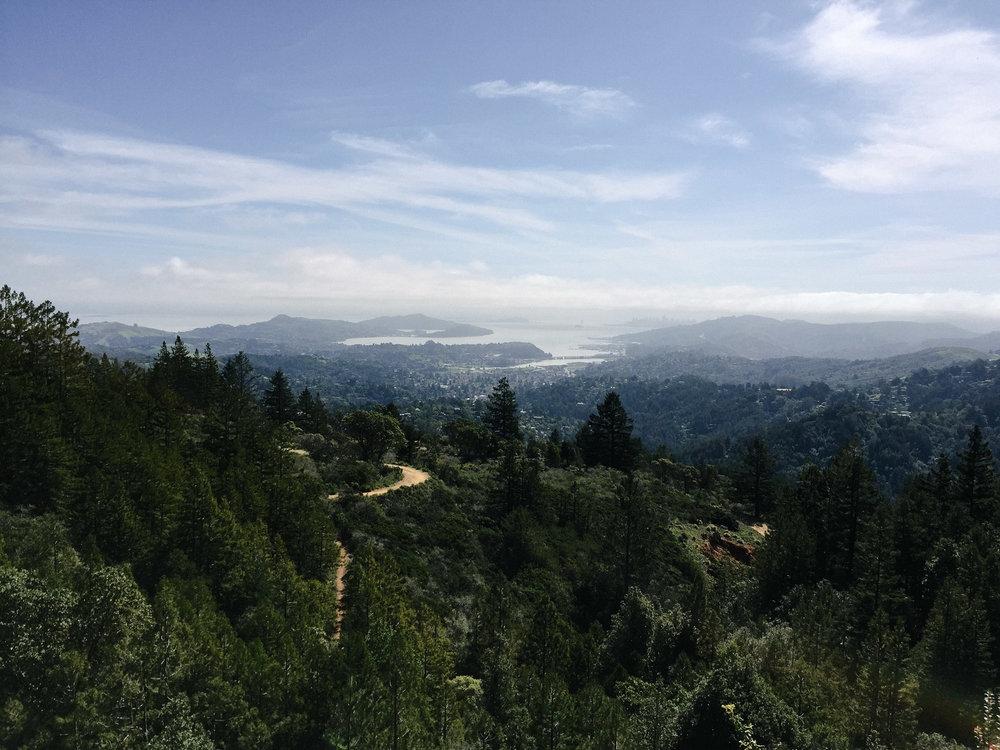 San Francisco Riding-1007