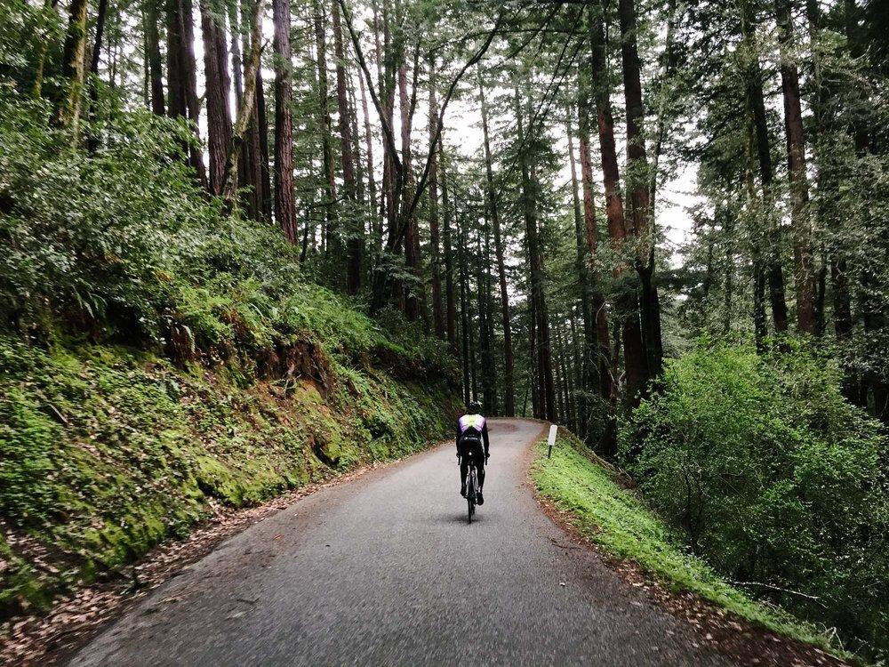 San Francisco Riding-1026