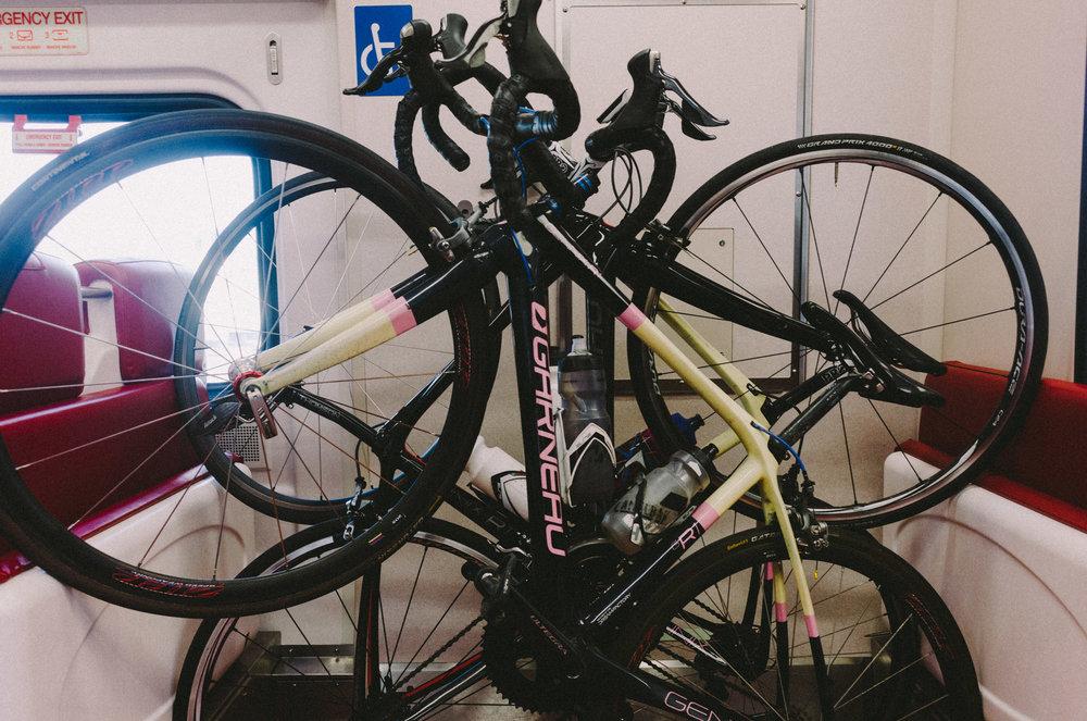 Quabbin Resevoir Road Race-2015.jpg