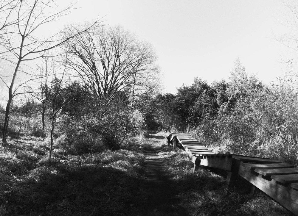 Six-Mile-Mountain-Biking-1001.jpg