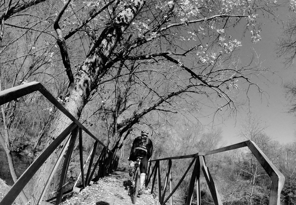 Six-Mile-Mountain-Biking-1006.jpg