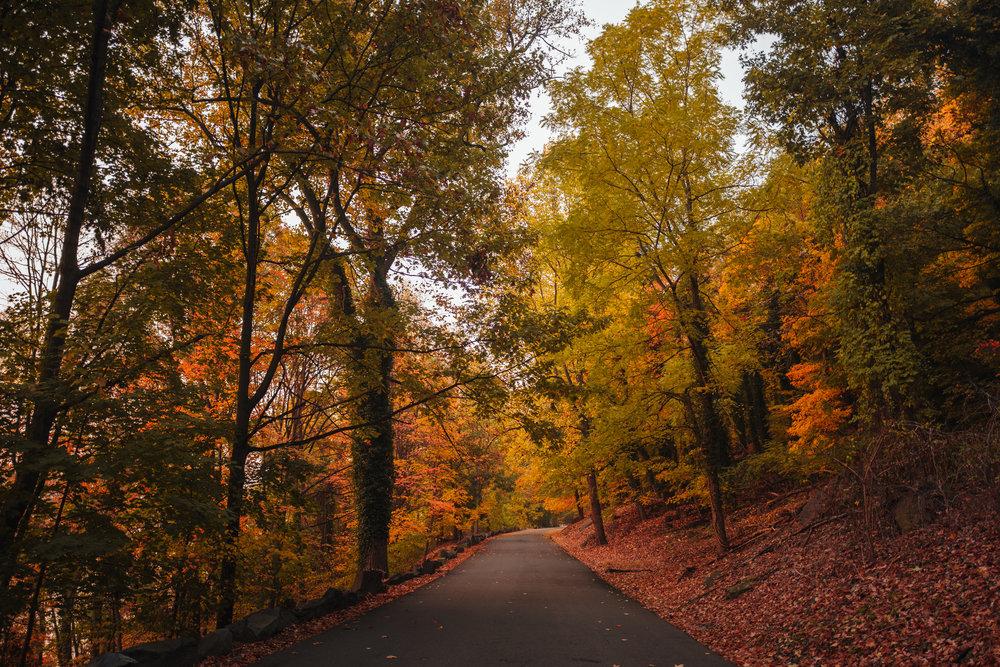 Photo Rhetoric - River Road-1024.jpg