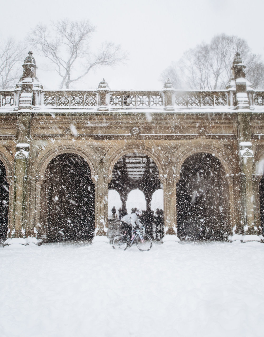 Photo Rhetoric - Central Park Snow Ride-1054.jpg